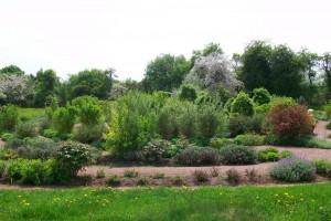 Das lebendige Labyrinth in Klostergarten