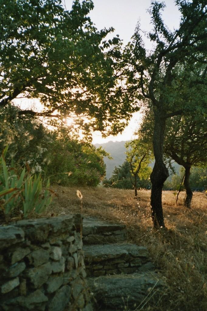 Stille am Abend (Sardinien)